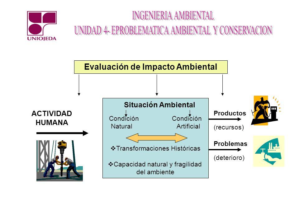 Situación Ambiental Condición Natural Artificial Transformaciones Históricas Capacidad natural y fragilidad del ambiente Evaluación de Impacto Ambient