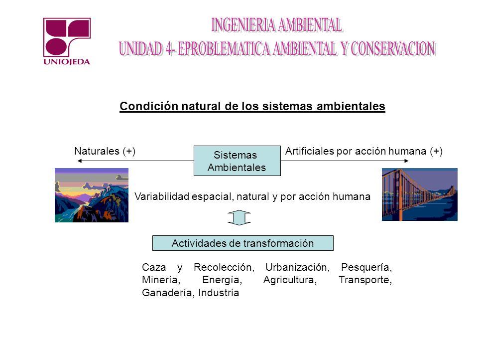 Condición natural de los sistemas ambientales Artificiales por acción humana (+)Naturales (+) Actividades de transformación Caza y Recolección, Urbani
