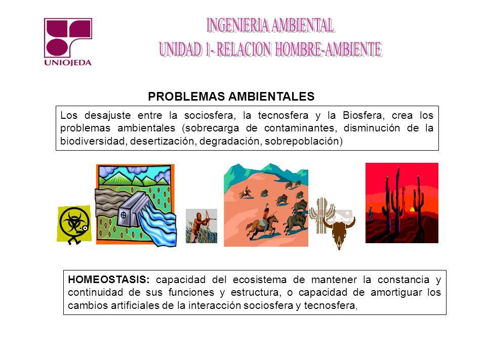 PROBLEMAS AMBIENTALES Los desajuste entre la sociosfera, la tecnosfera y la Biosfera, crea los problemas ambientales (sobrecarga de contaminantes, dis