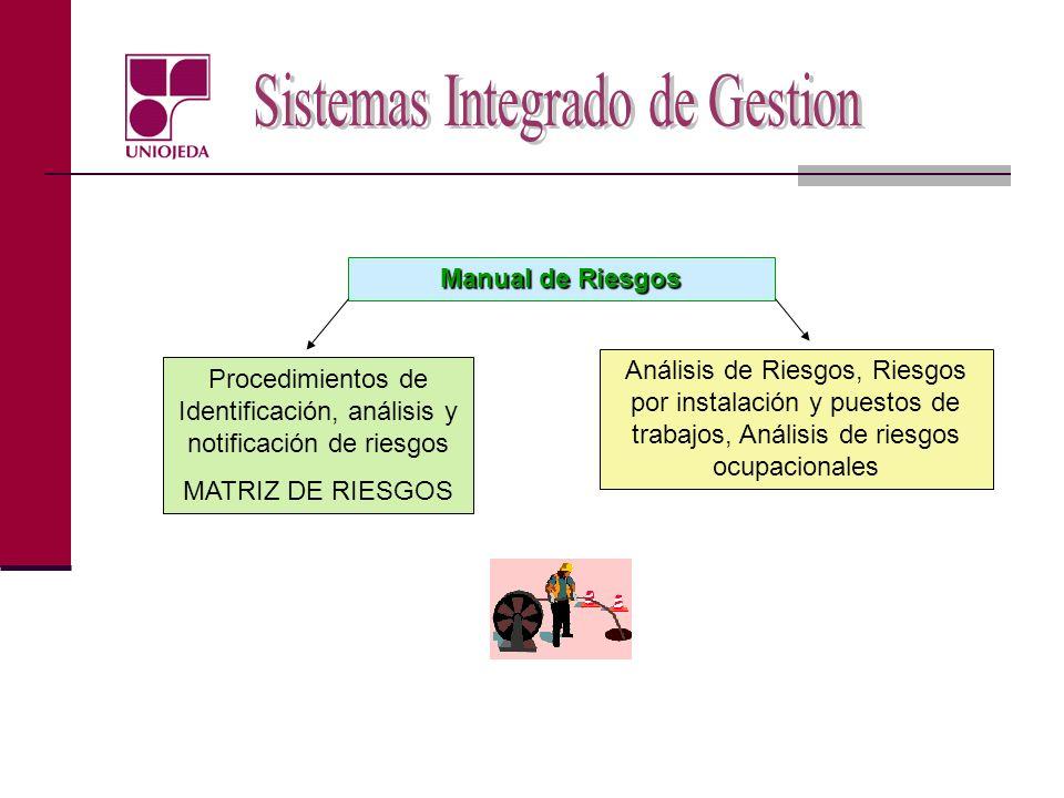 Manual de Riesgos Procedimientos de Identificación, análisis y notificación de riesgos MATRIZ DE RIESGOS Análisis de Riesgos, Riesgos por instalación