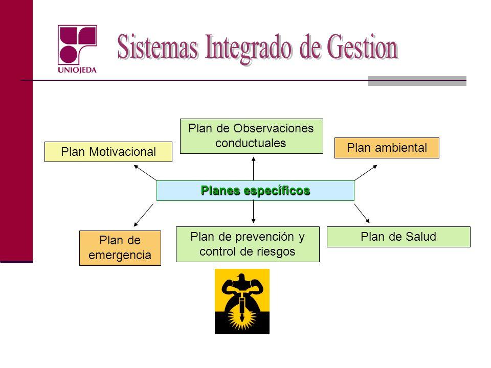 Planes específicos Plan de emergencia Plan de Salud Plan ambiental Plan Motivacional Plan de Observaciones conductuales Plan de prevención y control d