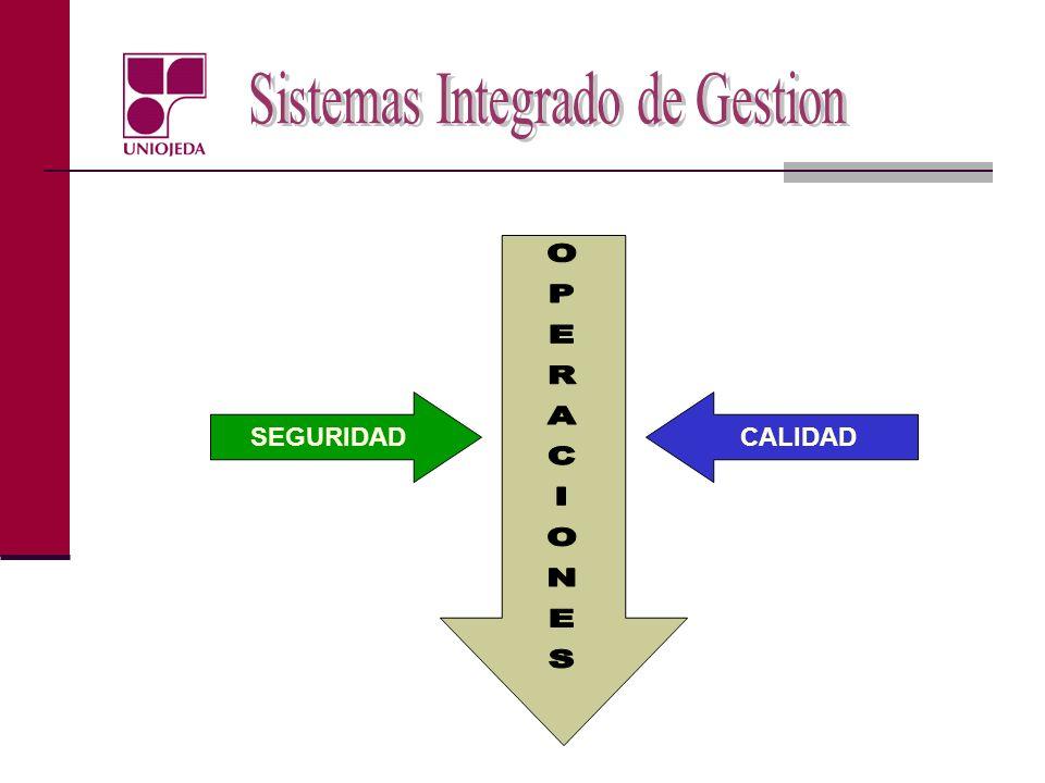 Evaluación de la gestión Modelos estadísticos para medir la gestión general o la de algún área o actividad en particular Programas computarizados Sistemas de Indicadores de gestión