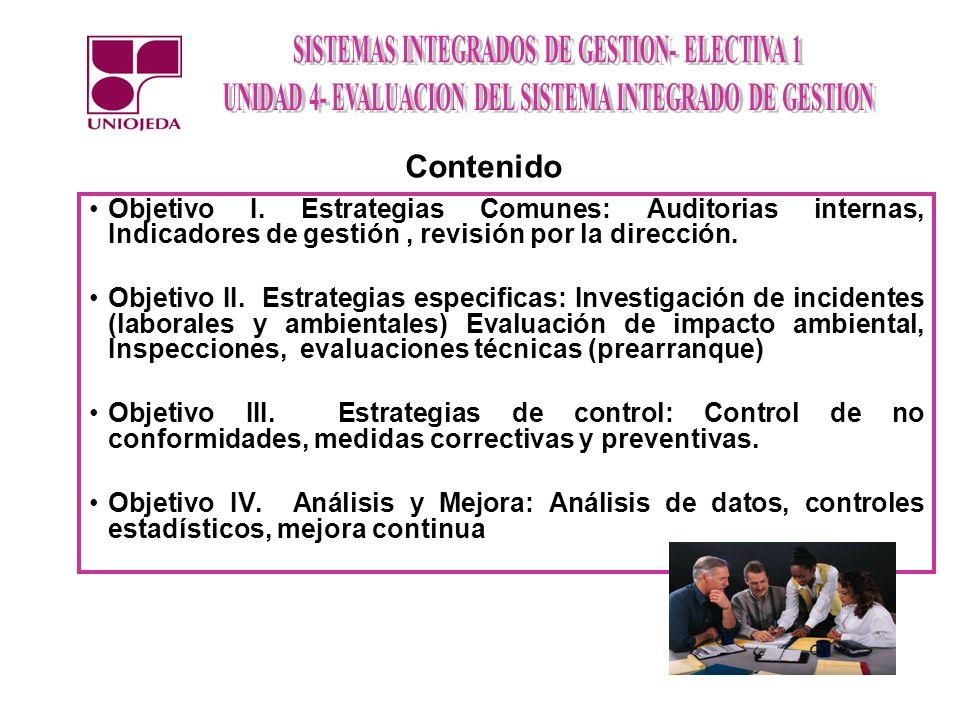 Objetivo I. Estrategias Comunes: Auditorias internas, Indicadores de gestión, revisión por la dirección. Objetivo II. Estrategias especificas: Investi