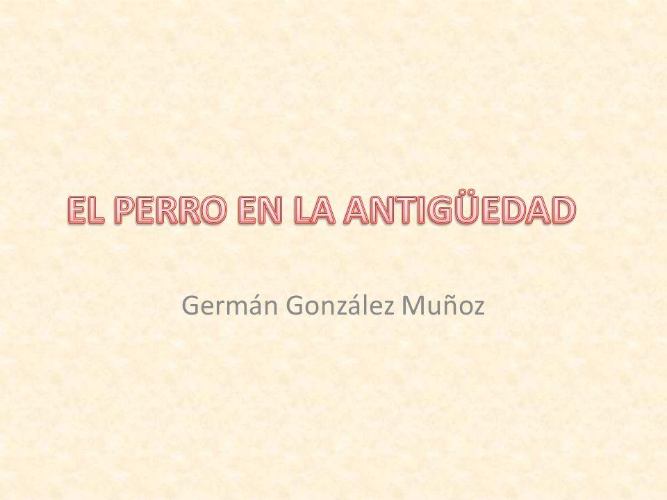 Germán González Muñoz