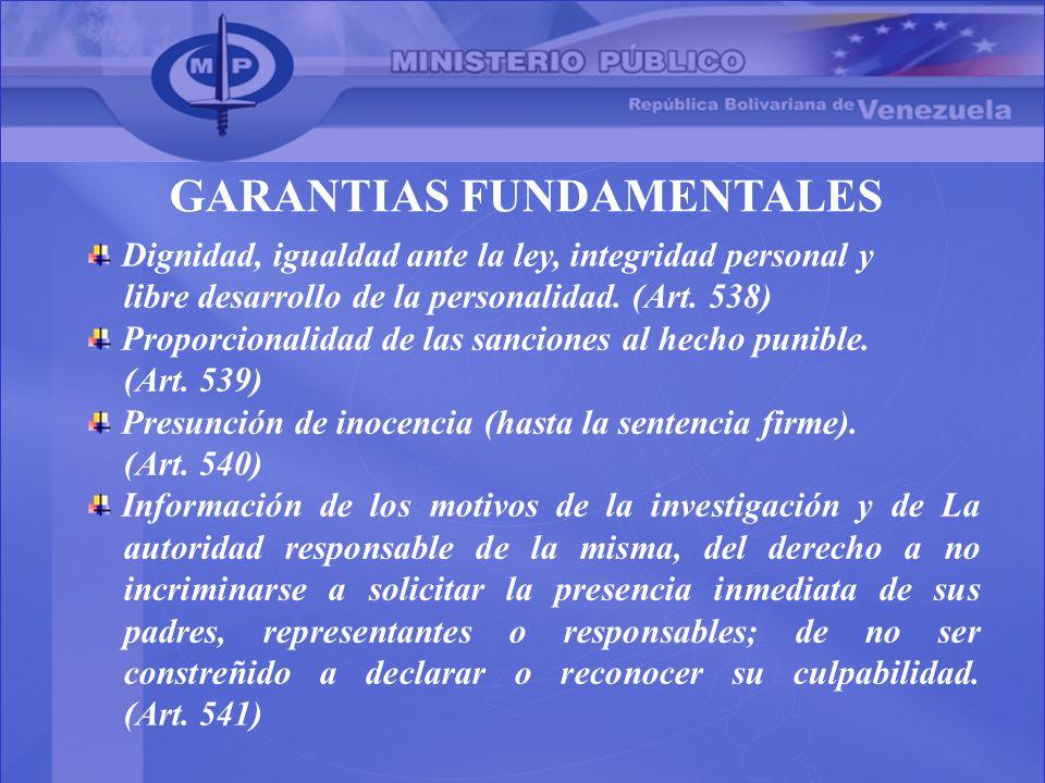 GARANTIAS FUNDAMENTALES Dignidad, igualdad ante la ley, integridad personal y libre desarrollo de la personalidad. (Art. 538) Proporcionalidad de las