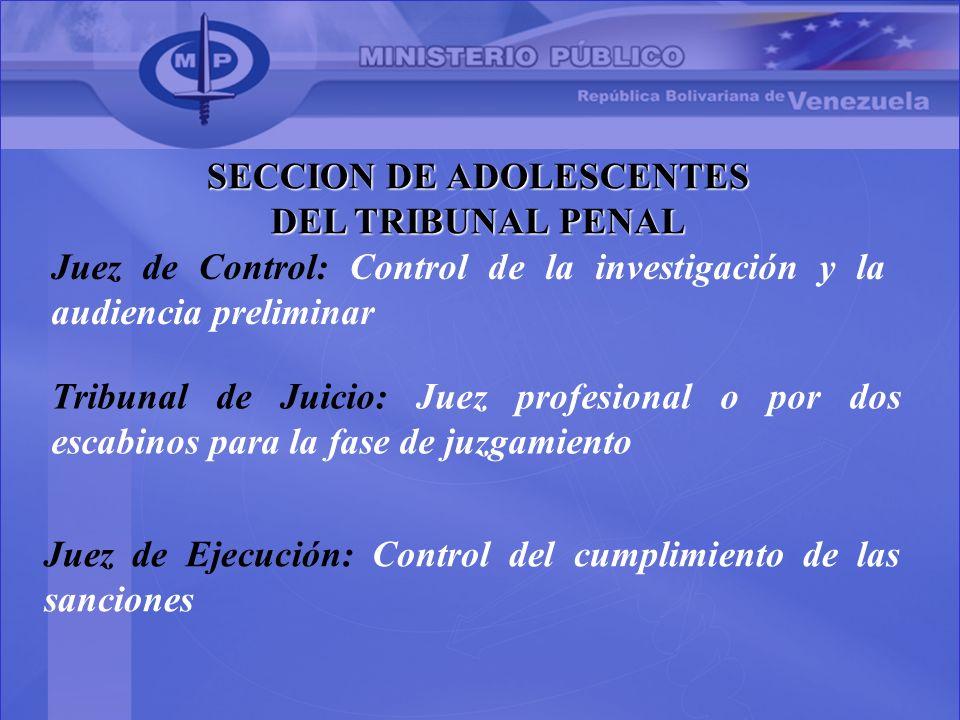 SECCION DE ADOLESCENTES DEL TRIBUNAL PENAL Juez de Control: Control de la investigación y la audiencia preliminar Tribunal de Juicio: Juez profesional