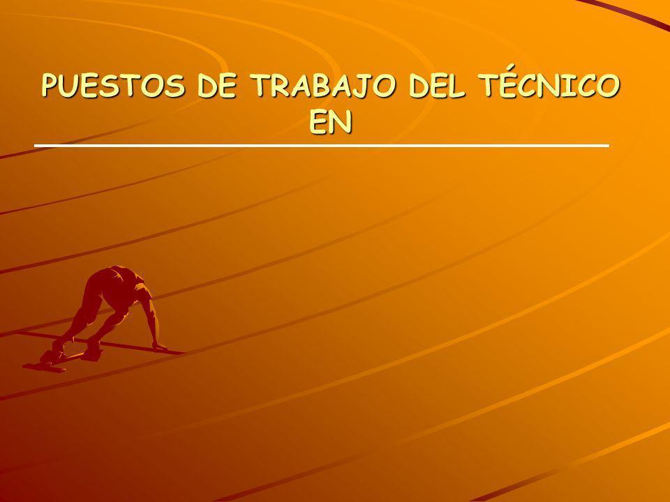 PUESTOS DE TRABAJO DEL TÉCNICO EN