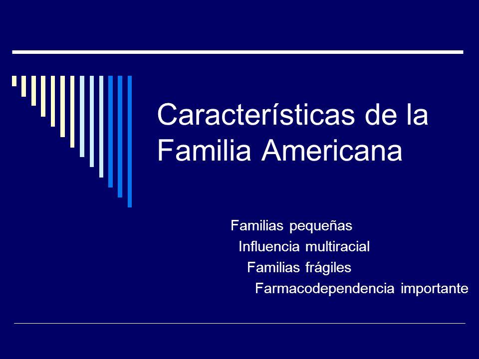 Características de la Familia Americana Familias pequeñas Influencia multiracial Familias frágiles Farmacodependencia importante