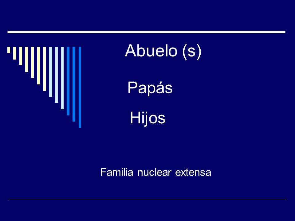 Papa-mama-hijos Familia ideal Familia Nuclear
