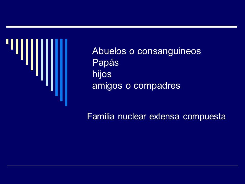 Familia nuclear extensa compuesta Abuelos o consanguineos Papás hijos amigos o compadres
