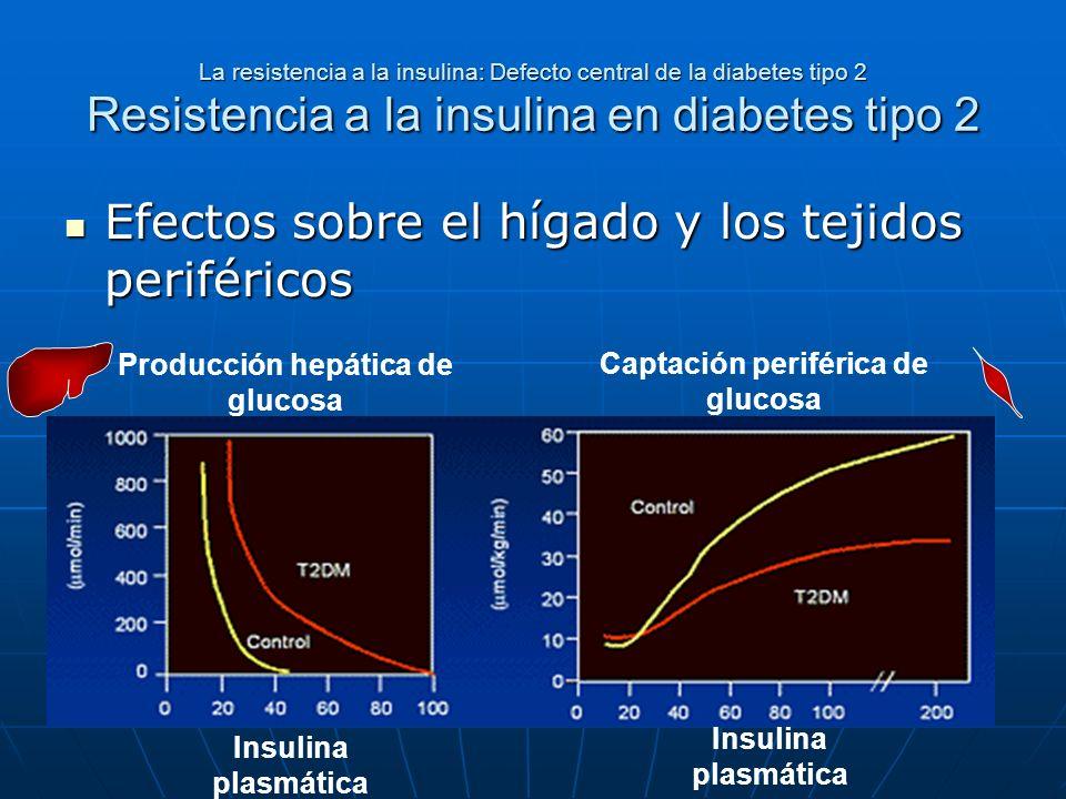 La resistencia a la insulina: Defecto central de la diabetes tipo 2 Resistencia a la insulina en diabetes tipo 2 Efectos sobre el hígado y los tejidos