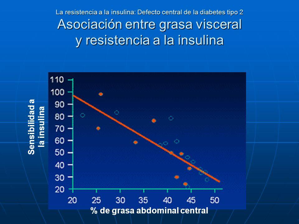 La resistencia a la insulina: Defecto central de la diabetes tipo 2 Asociación entre grasa visceral y resistencia a la insulina Sensibilidad a la insu