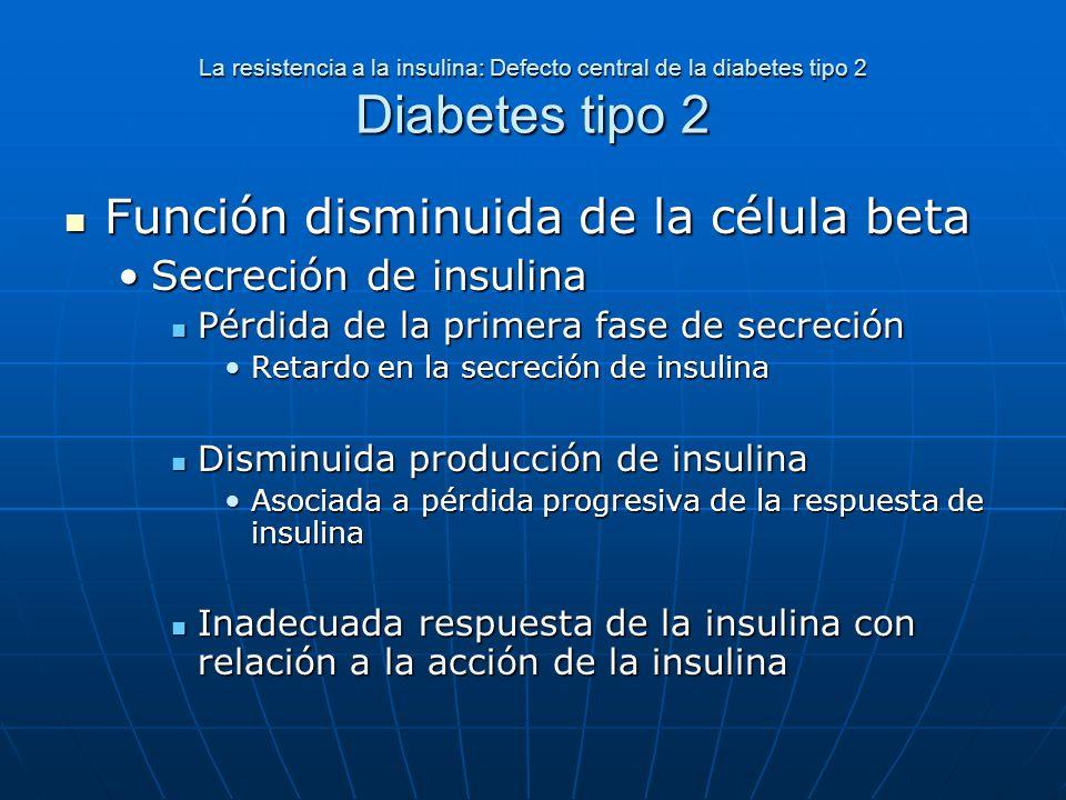 La resistencia a la insulina: Defecto central de la diabetes tipo 2 Diabetes tipo 2 Función disminuida de la célula beta Función disminuida de la célu