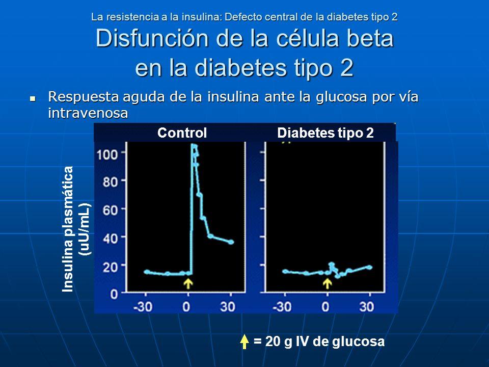 La resistencia a la insulina: Defecto central de la diabetes tipo 2 Disfunción de la célula beta en la diabetes tipo 2 Respuesta aguda de la insulina