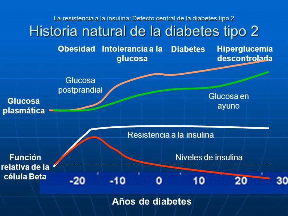 La resistencia a la insulina: Defecto central de la diabetes tipo 2 Historia natural de la diabetes tipo 2 Obesidad Glucosa plasmática Glucosa postpra