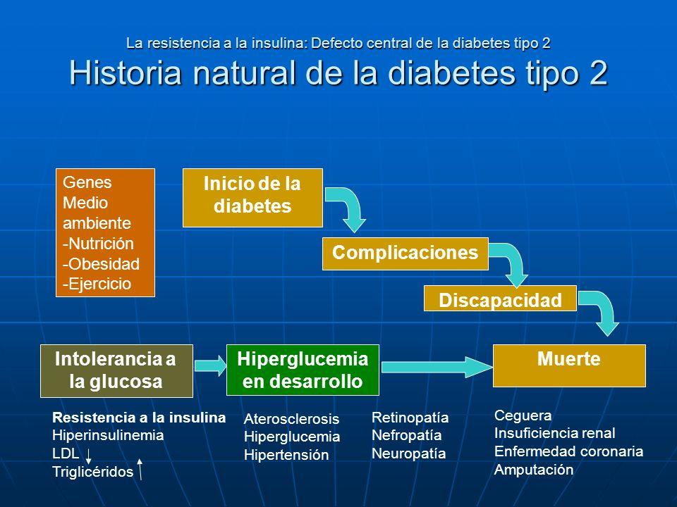 La resistencia a la insulina: Defecto central de la diabetes tipo 2 Historia natural de la diabetes tipo 2 Genes Medio ambiente -Nutrición -Obesidad -
