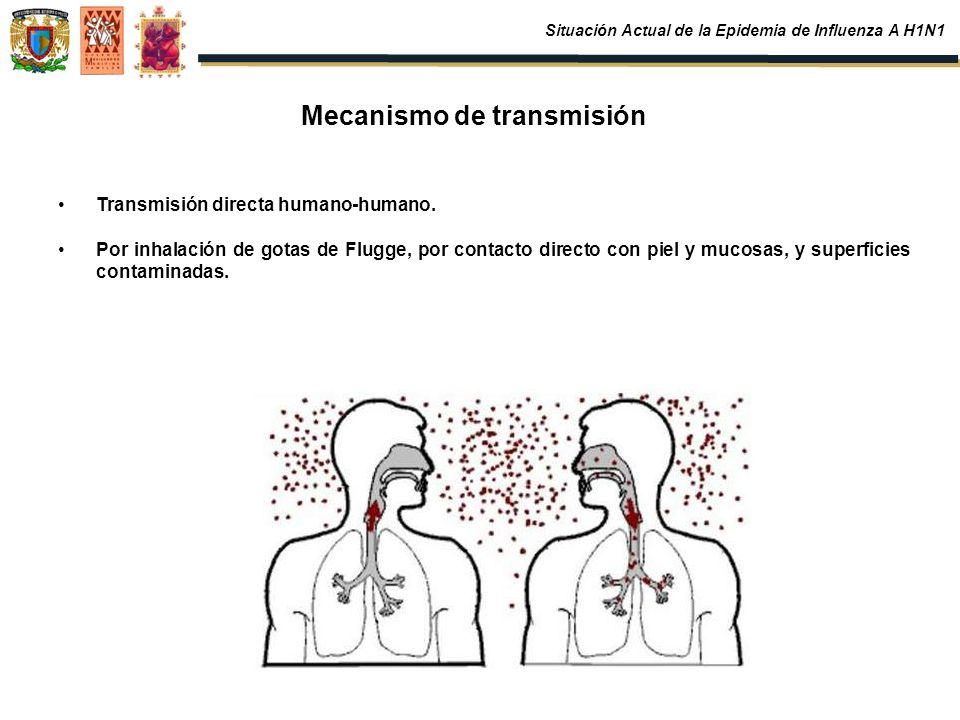 Mecanismo de transmisión Transmisión directa humano-humano. Por inhalación de gotas de Flugge, por contacto directo con piel y mucosas, y superficies