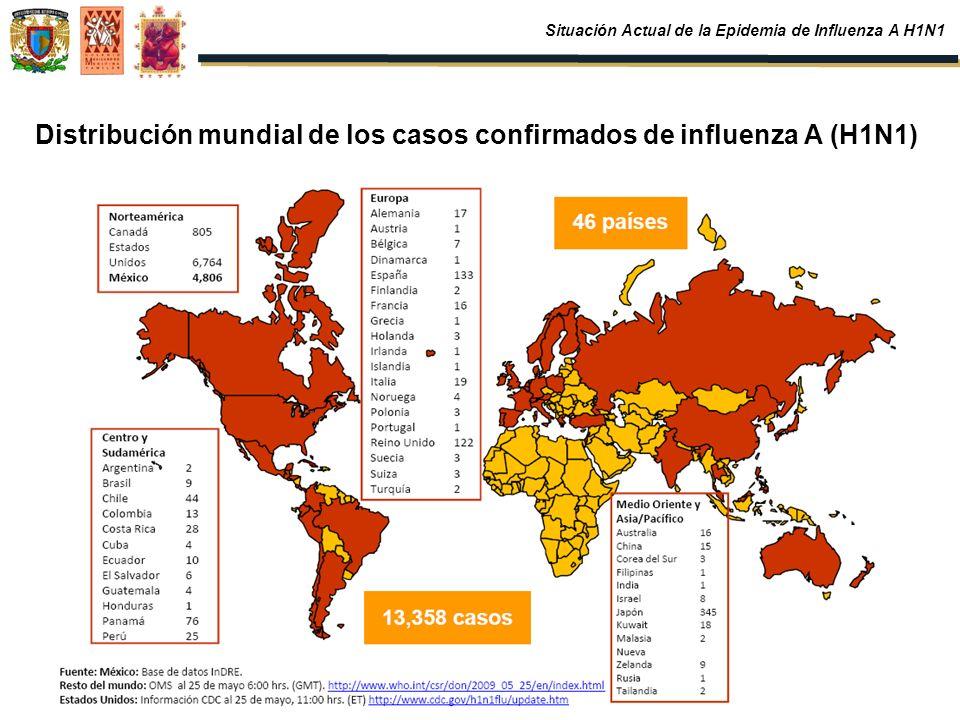 Distribución mundial de los casos confirmados de influenza A (H1N1) Situación Actual de la Epidemia de Influenza A H1N1