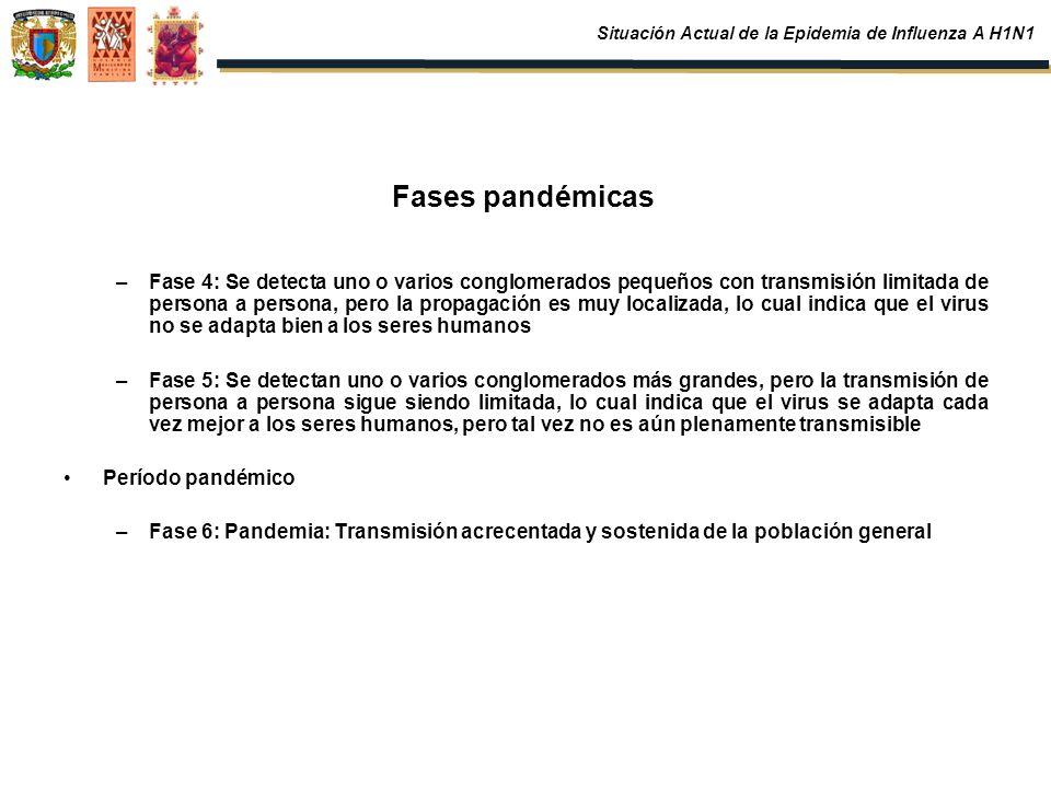 Fases pandémicas –Fase 4: Se detecta uno o varios conglomerados pequeños con transmisión limitada de persona a persona, pero la propagación es muy loc