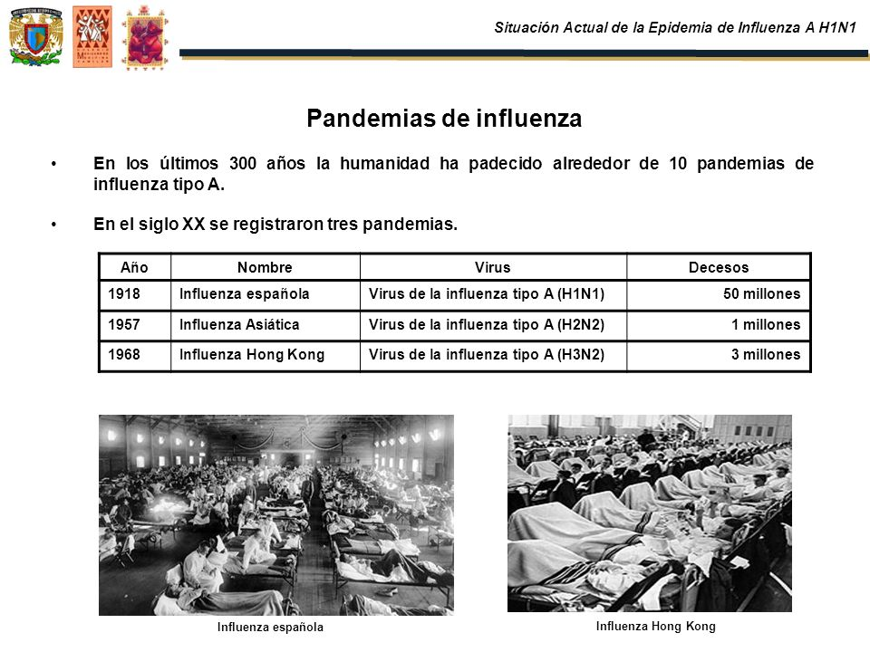 Pandemias de influenza En los últimos 300 años la humanidad ha padecido alrededor de 10 pandemias de influenza tipo A. En el siglo XX se registraron t