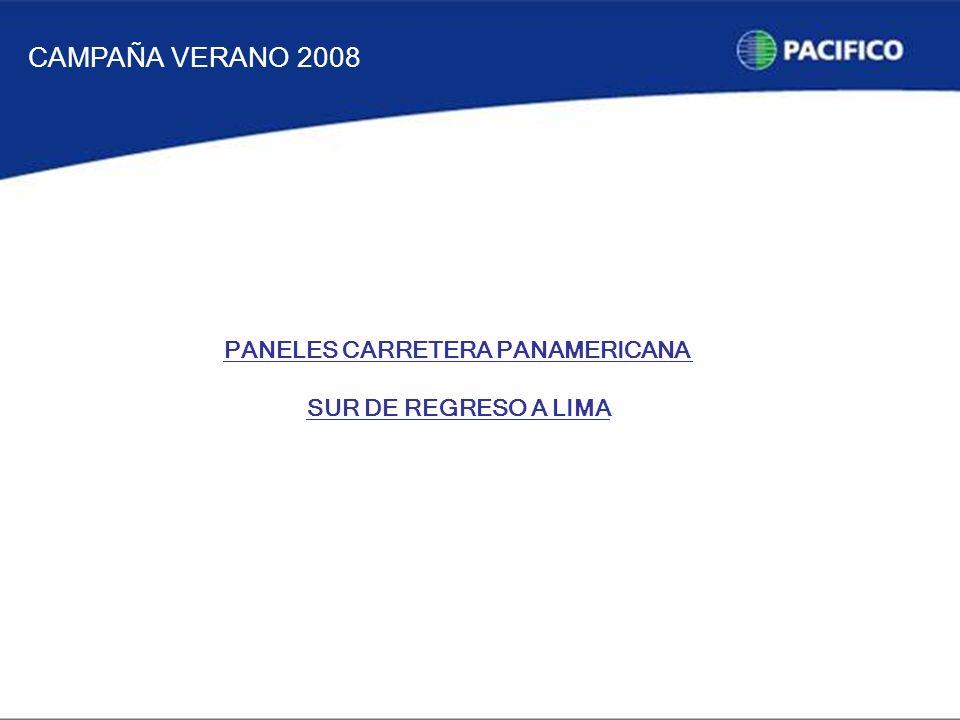 PANELES CARRETERA PANAMERICANA SUR DE REGRESO A LIMA