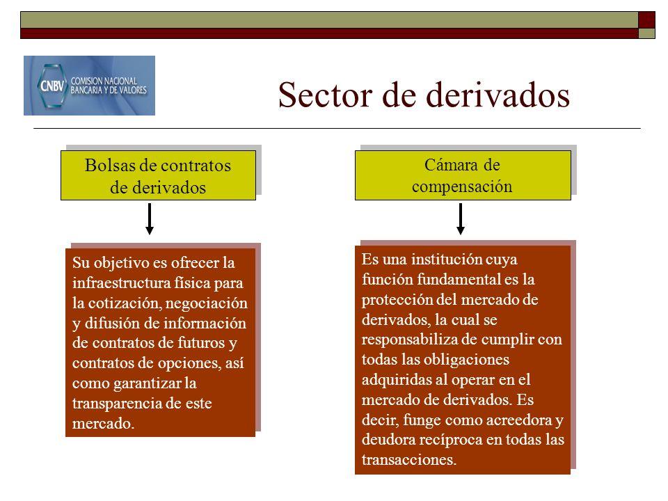 Sector de derivados Cámara de compensación Cámara de compensación Bolsas de contratos de derivados Bolsas de contratos de derivados Su objetivo es ofr