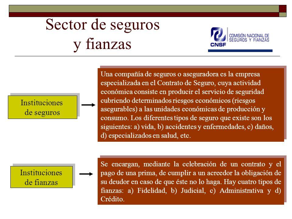 Sector de seguros y fianzas Instituciones de seguros Instituciones de seguros Instituciones de fianzas Instituciones de fianzas Una compañía de seguro
