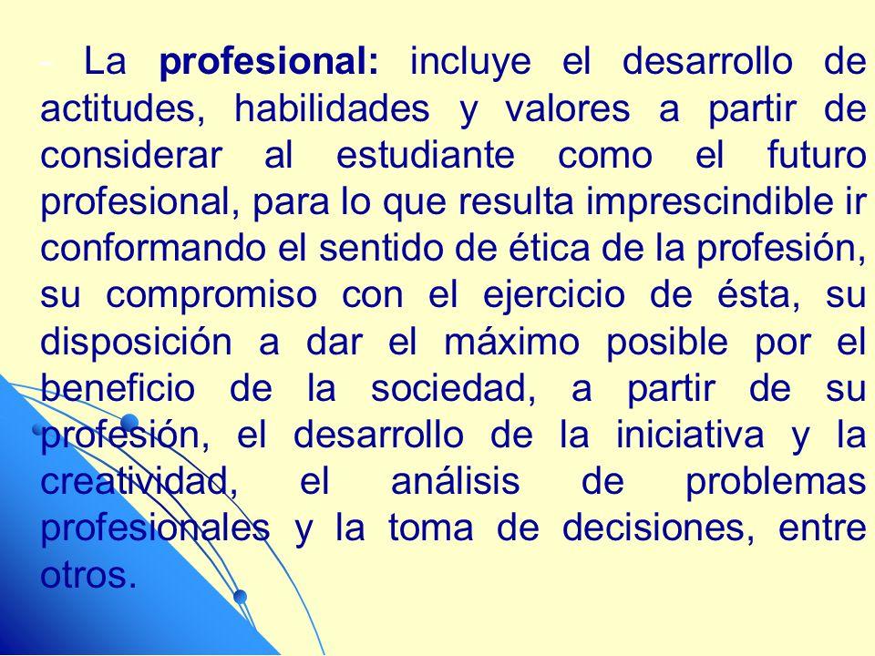 - La profesional: incluye el desarrollo de actitudes, habilidades y valores a partir de considerar al estudiante como el futuro profesional, para lo q