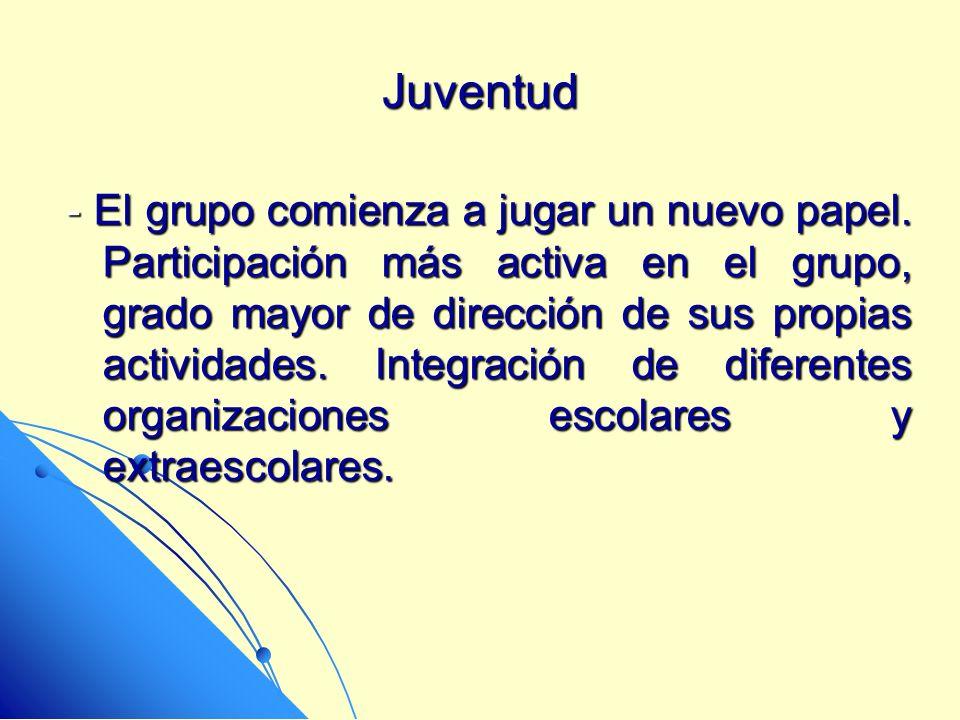 Juventud - El grupo comienza a jugar un nuevo papel. Participación más activa en el grupo, grado mayor de dirección de sus propias actividades. Integr