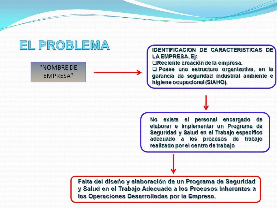 Diseñar y elaborar el Programa de Seguridad y Salud en el Trabajo adecuado a los procesos inherentes a las operaciones desarrolladas por la empresa