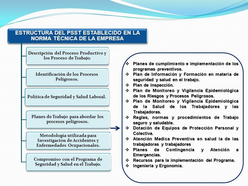 ESTRUCTURA DEL PSST ESTABLECIDO EN LA NORMA TÉCNICA DE LA EMPRESA Descripción del Proceso Productivo y los Proceso de Trabajo. Identificación de los P