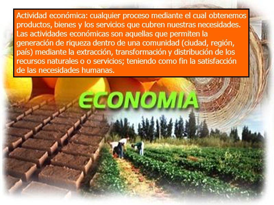 Actividad económica: cualquier proceso mediante el cual obtenemos productos, bienes y los servicios que cubren nuestras necesidades. Las actividades e