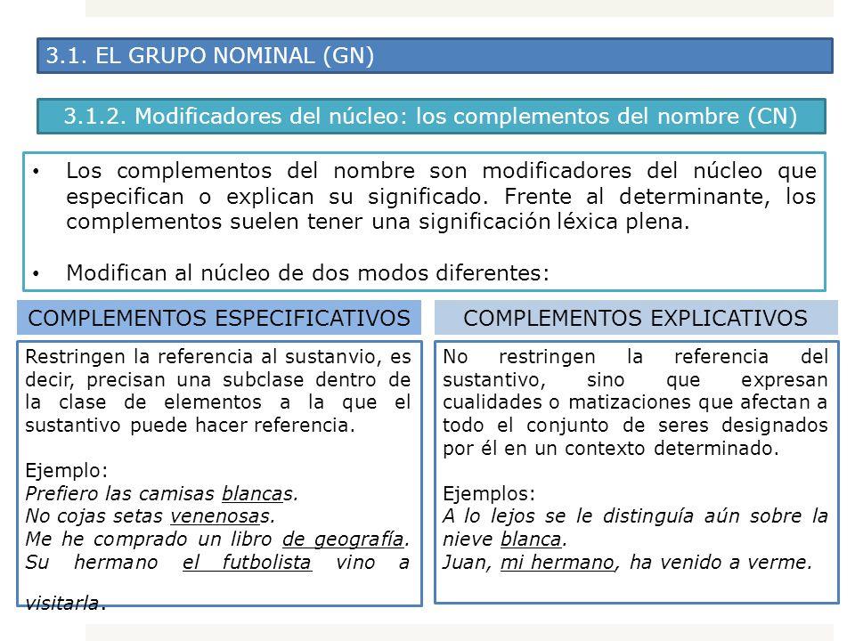 3.1. EL GRUPO NOMINAL (GN) Los complementos del nombre son modificadores del núcleo que especifican o explican su significado. Frente al determinante,