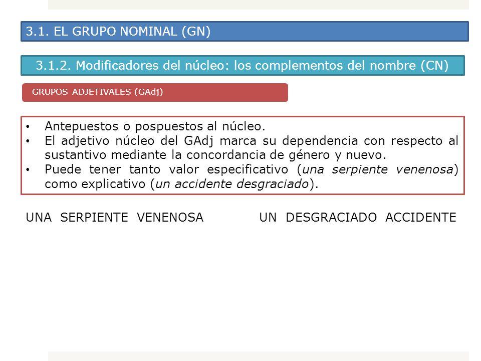 3.1. EL GRUPO NOMINAL (GN) 3.1.2. Modificadores del núcleo: los complementos del nombre (CN) GRUPOS ADJETIVALES (GAdj) Antepuestos o pospuestos al núc