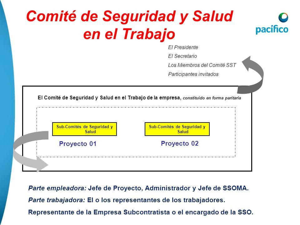 Comité de Seguridad y Salud en el Trabajo Parte empleadora: Jefe de Proyecto, Administrador y Jefe de SSOMA. Parte trabajadora: El o los representante