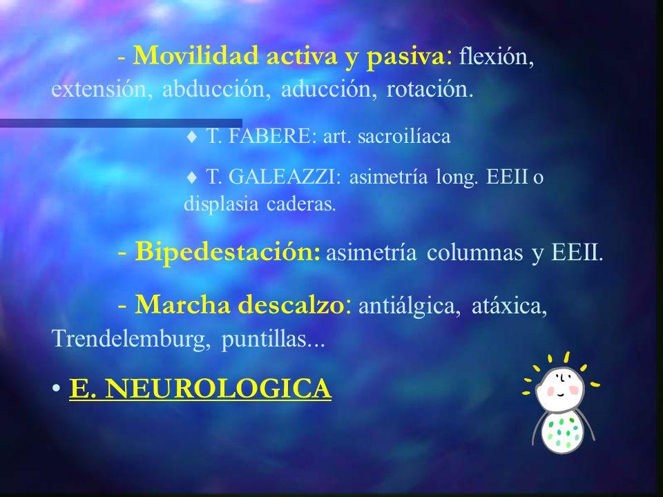 E. LOCOMOTORA - Inspección: columna extremidades: posición, signos de inflamación, longitud, atrofia muscular, planta de los pies. - Palpación : punto
