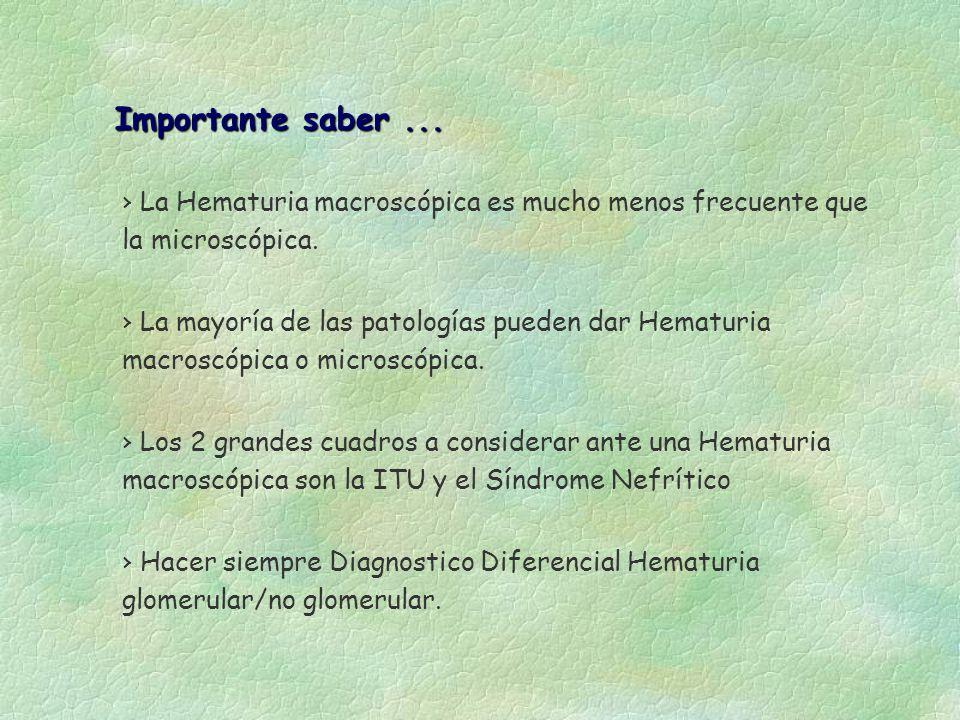 La Hematuria macroscópica es mucho menos frecuente que la microscópica. Importante saber... Importante saber... La mayoría de las patologías pueden da