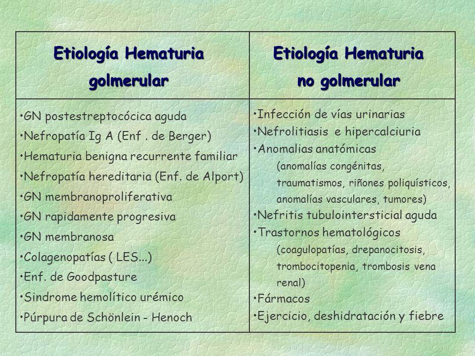 Etiología Hematuria no golmerular Etiología Hematuria golmerular GN postestreptocócica aguda Nefropatía Ig A (Enf. de Berger) Hematuria benigna recurr