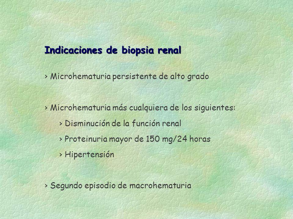 Indicaciones de biopsia renal Indicaciones de biopsia renal Microhematuria persistente de alto grado Microhematuria más cualquiera de los siguientes: