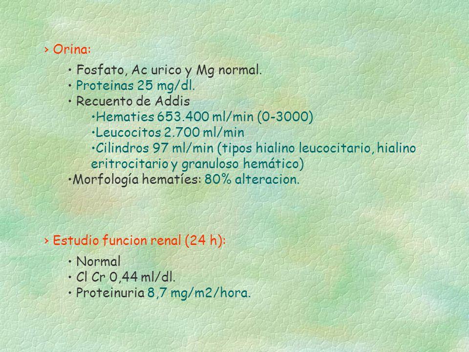 Fosfato, Ac urico y Mg normal. Proteinas 25 mg/dl. Recuento de Addis Hematies 653.400 ml/min (0-3000) Leucocitos 2.700 ml/min Cilindros 97 ml/min (tip