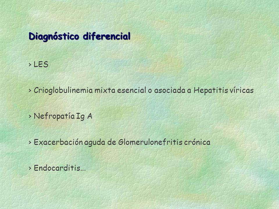 Diagnóstico diferencial LES Crioglobulinemia mixta esencial o asociada a Hepatitis víricas Nefropatía Ig A Endocarditis... Exacerbación aguda de Glome