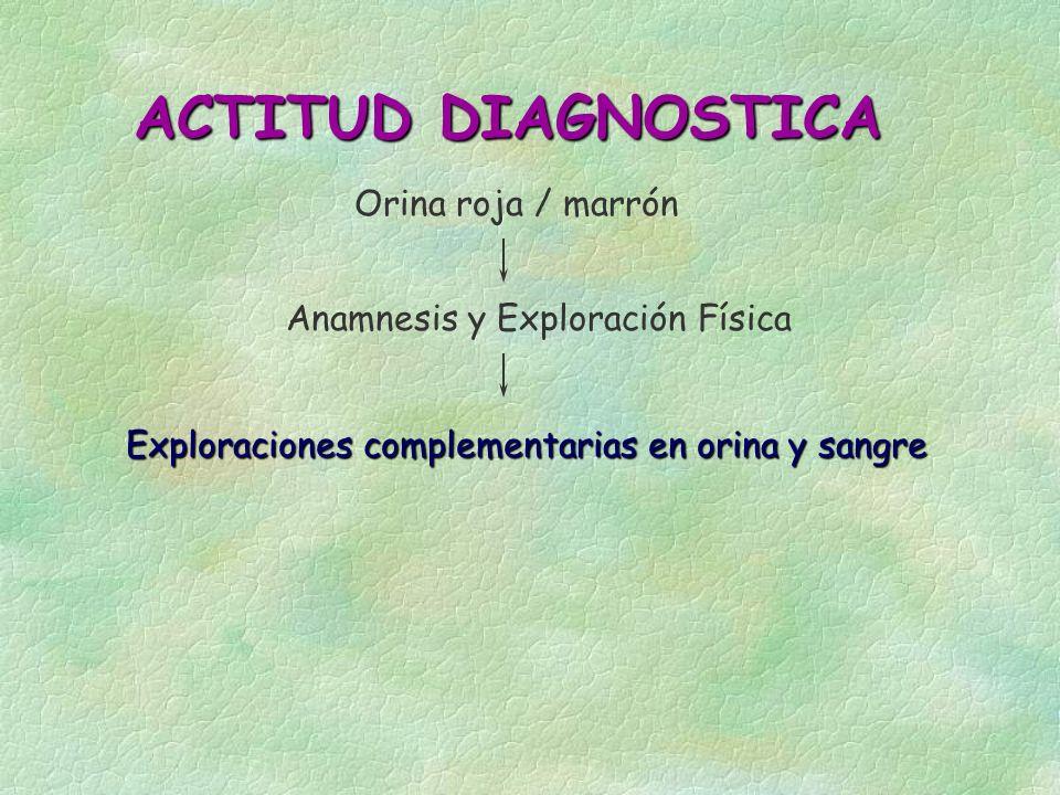 ACTITUD DIAGNOSTICA Orina roja / marrón Anamnesis y Exploración Física Exploraciones complementarias en orina y sangre