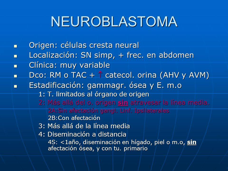 NEUROBLASTOMA Origen: células cresta neural Origen: células cresta neural Localización: SN simp, + frec. en abdomen Localización: SN simp, + frec. en