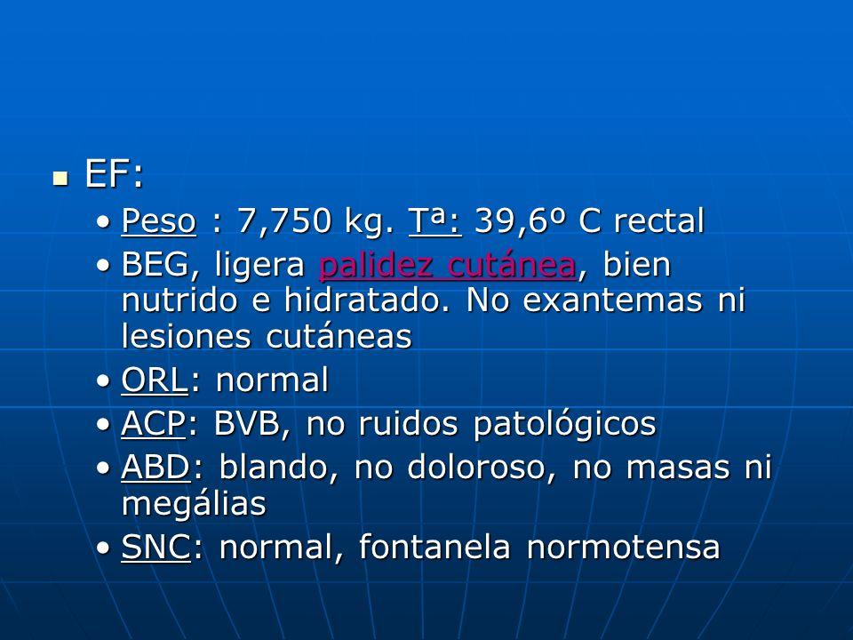 EF: EF: Peso : 7,750 kg. Tª: 39,6º C rectalPeso : 7,750 kg. Tª: 39,6º C rectal BEG, ligera palidez cutánea, bien nutrido e hidratado. No exantemas ni