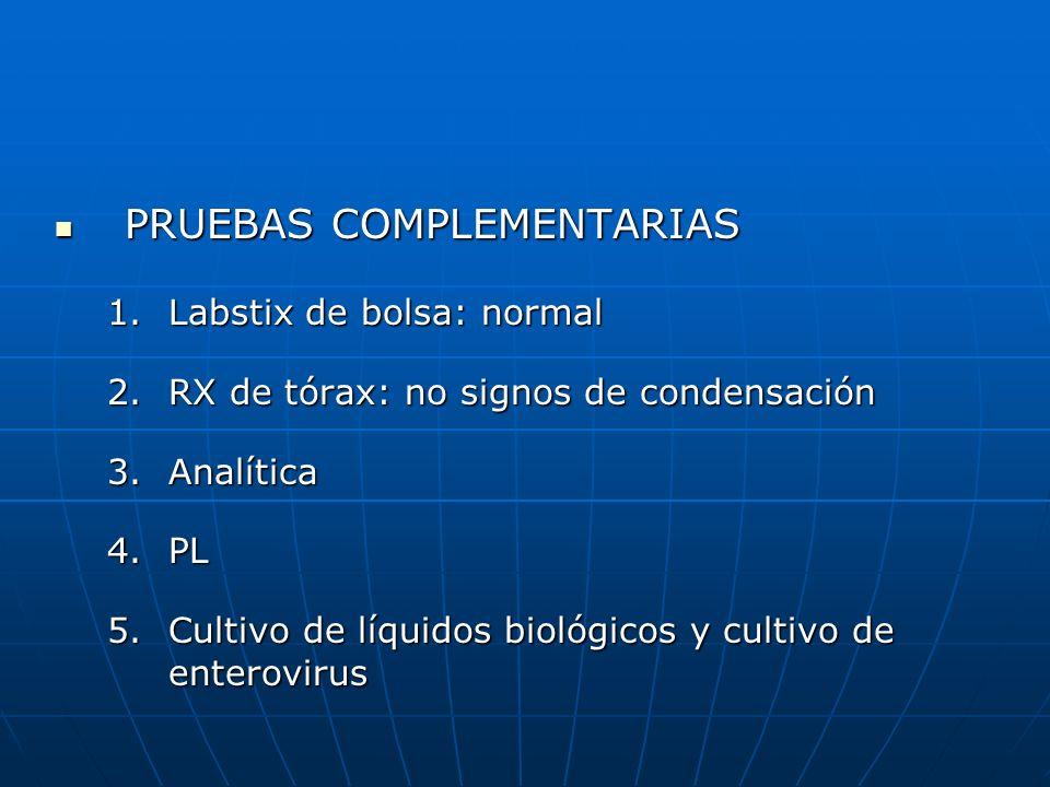 PRUEBAS COMPLEMENTARIAS PRUEBAS COMPLEMENTARIAS 1.Labstix de bolsa: normal 2.RX de tórax: no signos de condensación 3.Analítica 4.PL 5.Cultivo de líqu