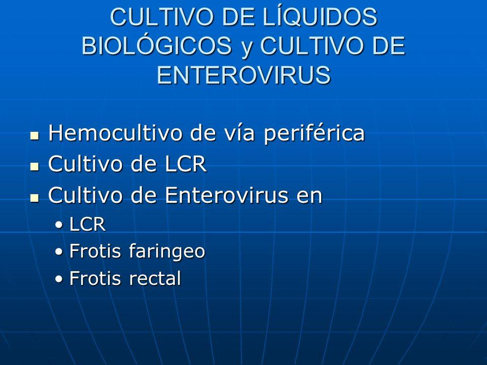 A.MACROCÍTICAS A. FISIOLÓGICA DEL LACTANTE A.