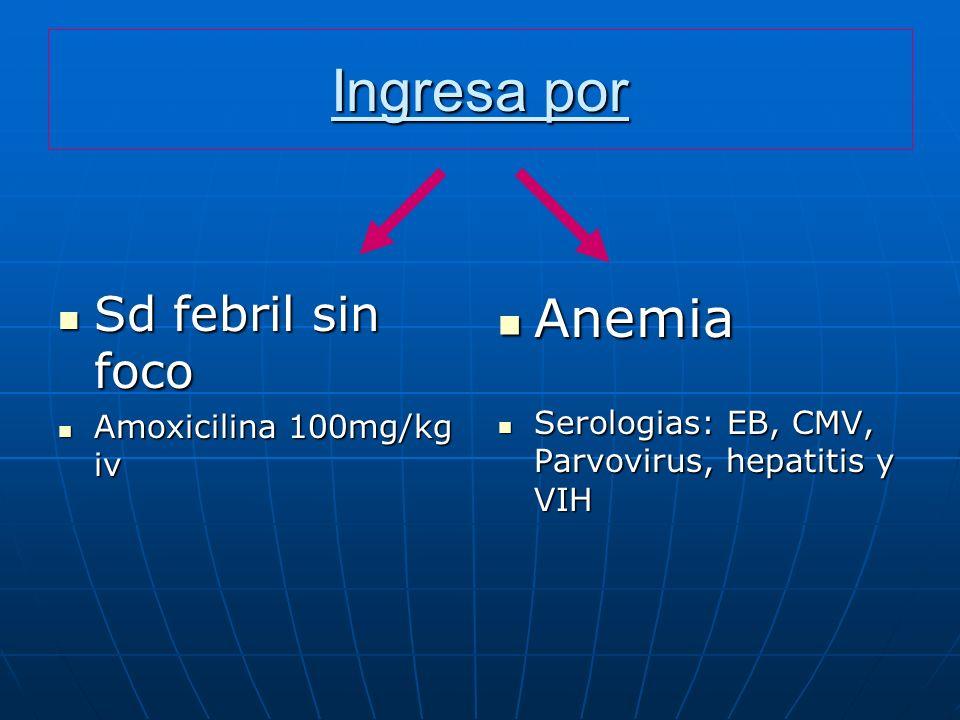 Ingresa por Sd febril sin foco Sd febril sin foco Amoxicilina 100mg/kg iv Amoxicilina 100mg/kg iv Anemia Anemia Serologias: EB, CMV, Parvovirus, hepat