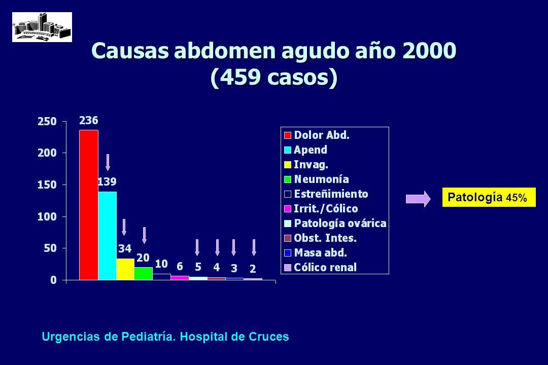 Causas abdomen agudo año 2000 (459 casos) Urgencias de Pediatría. Hospital de Cruces Patología 45%