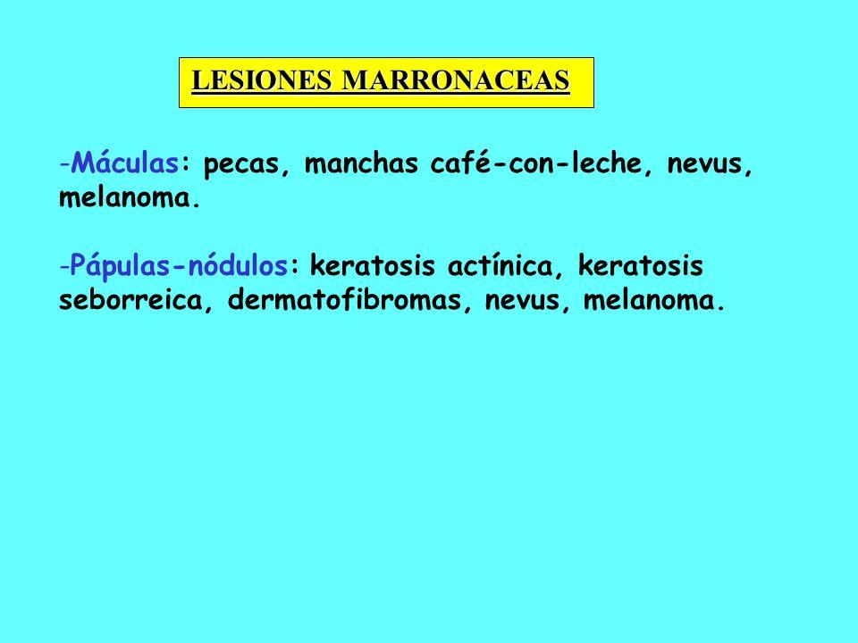 - -Máculas: pecas, manchas café-con-leche, nevus, melanoma. - -Pápulas-nódulos: keratosis actínica, keratosis seborreica, dermatofibromas, nevus, mela