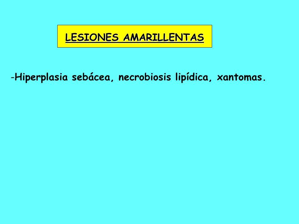 - -Hiperplasia sebácea, necrobiosis lipídica, xantomas. LESIONES AMARILLENTAS